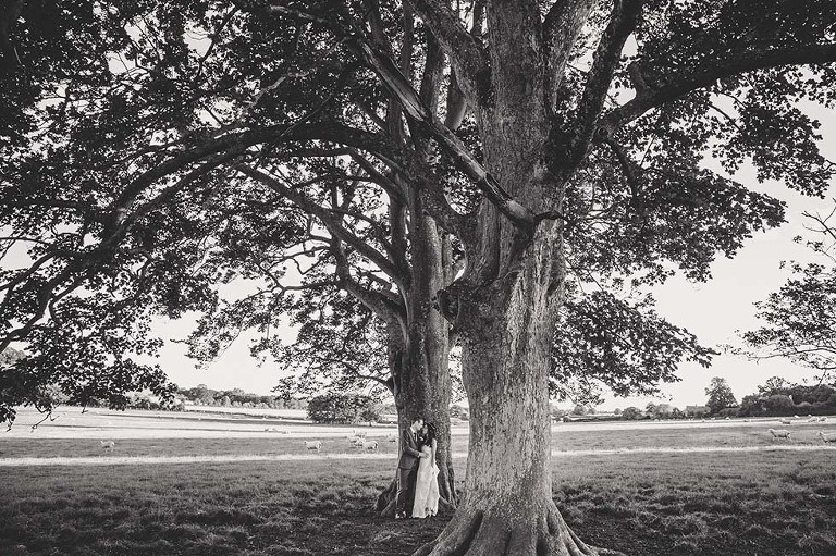 Bride and groom under a huge tree at Farbridge