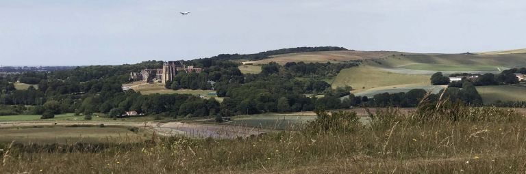 View of Lancing College from the South Downs